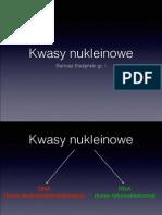 Kwasy nukleinowe pdf.pdf