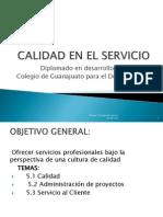 Calidad en El Servicio20141