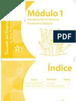 Cuadernillo - M1 Introducción Al Servicio Financiero Integral
