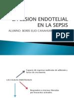 La Lesion Endotelial en La Sepsis