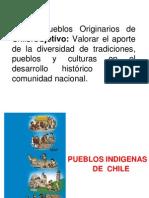 Pueblos Originarios de Chile.ppt