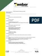 ft_weber_rep_750.pdf
