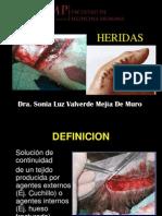 [Pro] [s9] Heridas