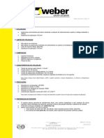 FT_weber.floor_dur_v0.pdf