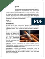 Drogas Legales e Ilegales