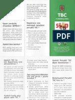 leaflet-tb.pdf