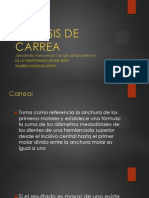 Analisis de Carrea