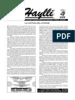 Boletín-Haylli-20