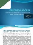 Principios Constitucionales y Sujetos