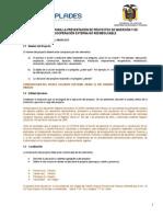 PROYECTO PUENTE SAN VIRGILIO SENPLADES.pdf