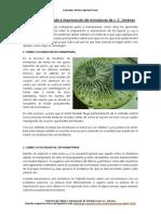 Tutorial sobre lijado e imprimación de miniaturas.pdf