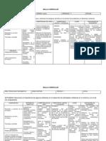 Mallas Tecnologia e Informatica 2014 IE La Concha Primer P CORREGIDO 15-08