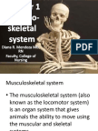 Chapter 1-Musculoskeletal System