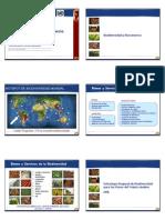 Presentación Prog Andio de Biocomercio MEG