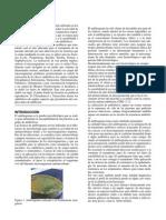 Elaboración de un antibiograma web.docx