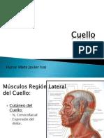 cuelloytorax-100826214935-phpapp01