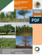 Especies Promisorias de Clima Tropical Para Plantaciones Forestales Comerciales en Michoacán_ H.