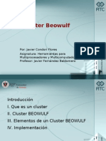 Clusterbeowulf Javiercondoriflores 110607131455 Phpapp02