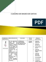Cuadro de Bases de Datos