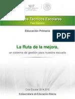 Guia Cte Fase Intensiva 30062014 Primaria