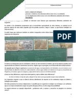 Ambientey Adaptaciones_2014docx.docx
