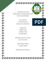 Visita Domiciliaria Nuevo