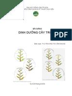 dinh dưỡng cây trồng
