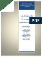 Apostila de Semiologia Médica - Universidade Federal Do Rio Grande - FURG