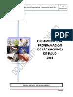 Lineamientos de Programación 2014 GCPS EsSalud 20dic2013
