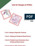 Dengue Detection Tests at PUCHs