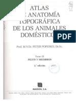 Popesko Atlas Anatomía Tomo 3