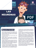 laboratorio-neuri-las-nuronas (1)
