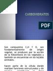 carbohidratos-100907232741-phpapp02