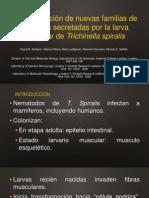 Identificación de Una Nueva Familia de Proteínas Secretadas por Trichinella