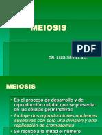 05 Meiosis (1)