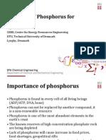 KajThomsen_Phosphorus1298