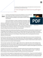 Investigators decipher how dangerous food-borne pathogen evades body's defenses | News Center | Stan
