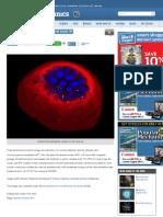 Listeria Monocytogenes Invasion of the Villus Tip - Popular Mechanics