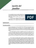 Formacion Del Nucleo Familiar