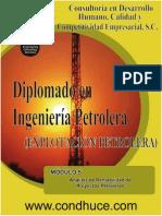 Módulo 5.- Análisis de Rentabilidad de Proyectos Petroleros