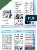 TRIPTICO PNFI.pdf