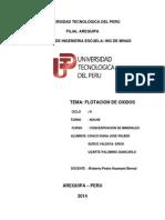Monografia Flotacion de Oxidos1
