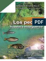 pecesHuastecaH