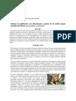 Síntesis de Metilésteres Con Diazometano a Partir de Los Ácidos Grasos Extraídos Del Merey (Anacardium Occidentale) (1)