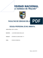 Informe Nº 05