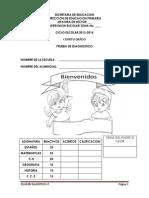 4o-diagnostico-2013
