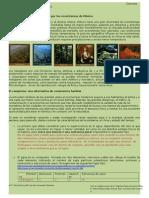 94511416 u2 a3 Estudio de Caso2 Ecosistemas de Mexico