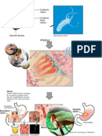Patologia Clinica Casos Clinicos
