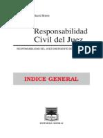 responsabilidad del juexz.pdf