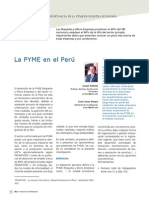 Características e Importancia de La Pyme en Nuestra Economía